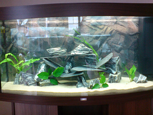 aquarium dekoration beispiele m belideen. Black Bedroom Furniture Sets. Home Design Ideas